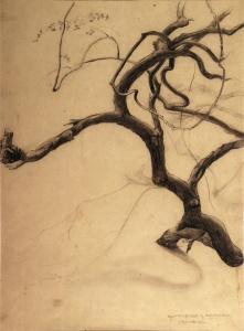 Raúl G. Prada, 1934, Algarrobillo, Chaco Boreal, Colección particular, Cochabamba
